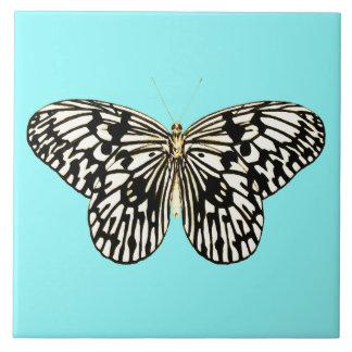 白黒蝶、ターコイズの背景 タイル