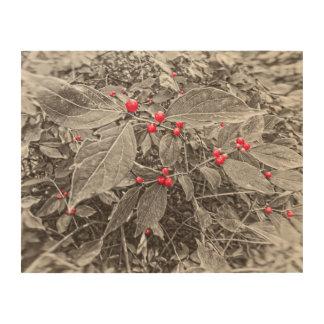白黒裏庭の果実および葉 ウッドウォールアート