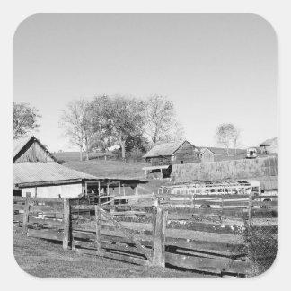 白黒農場 スクエアシール
