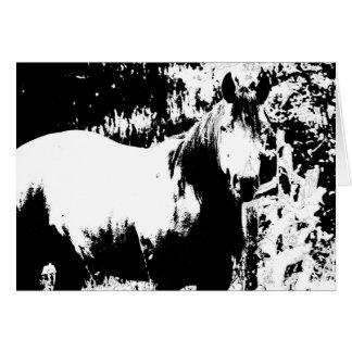 白黒馬カード カード