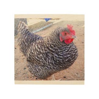 白黒鶏 ウッドウォールアート