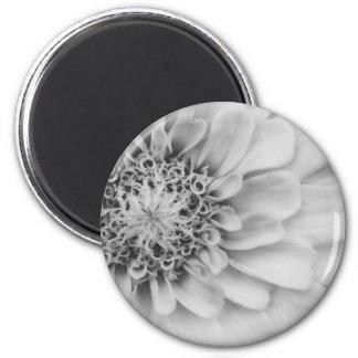 白黒《植物》百日草 マグネット