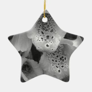 白黒foxgloveの写真 セラミックオーナメント