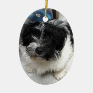 白黒Havaneseの救助の子犬 セラミックオーナメント