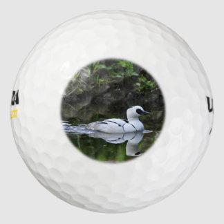 白黒Smewまたは海の潜水ガモの水鳥 ゴルフボール