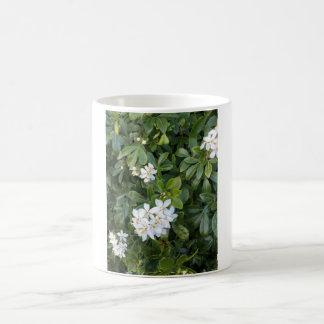 白325のmlのクラシックで白いマグ。 白い花 コーヒーマグカップ
