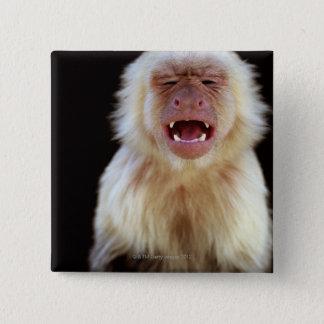 白throated capuchin (Cebusのcapucinus) 5.1cm 正方形バッジ