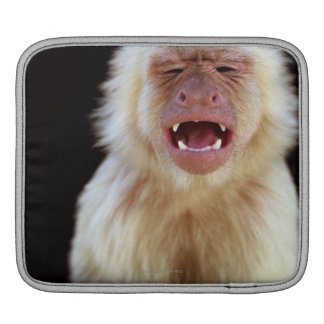 白throated capuchin (Cebusのcapucinus) iPadスリーブ