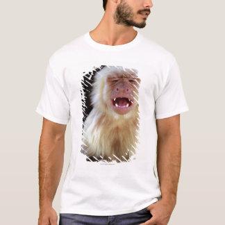 白throated capuchin (Cebusのcapucinus) Tシャツ