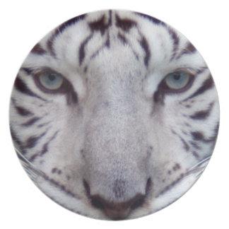 白tiger2 10x10 プレート