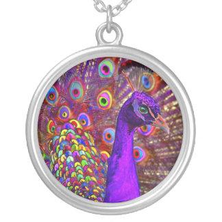 百万色の孔雀 シルバープレートネックレス