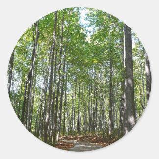 百年間の樹木が茂った道II Ellicott都市メリーランド ラウンドシール