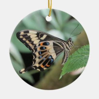 皇帝のアゲハチョウの蝶 セラミックオーナメント