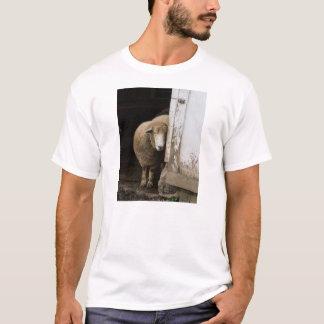 皮Nのヒツジ-中型のTシャツ Tシャツ