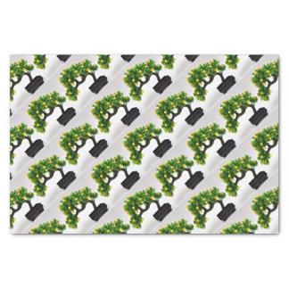 盆栽の木 薄葉紙