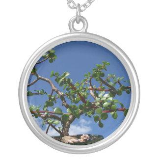 盆栽のportulacariaのafraの木1 シルバープレートネックレス