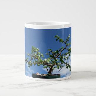 盆栽のportulacariaのafraの木2 ジャンボコーヒーマグカップ