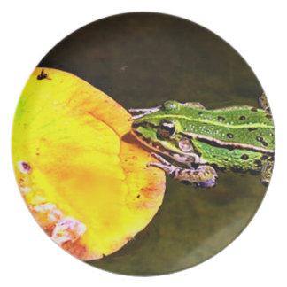 監視夕食のカエルのプレート プレート