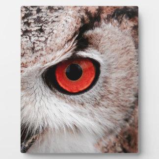 目が赤いフクロウ フォトプラーク