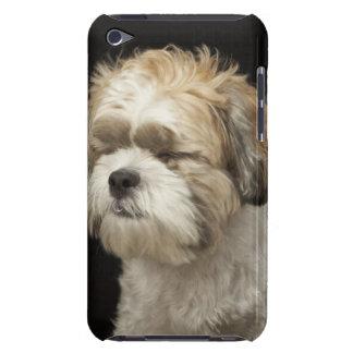 目とのブラウンおよび白いシーズー(犬) Tzuは閉まりました Case-Mate iPod Touch ケース