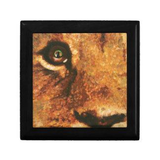 目の虹を持つライオン ギフトボックス