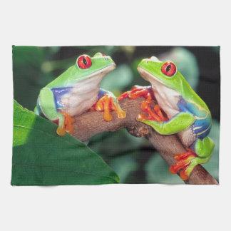 目のTreefrogの赤い組、Agalychinisのcallidryas、 キッチンタオル