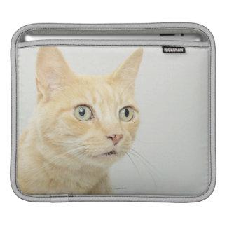 目を持つ猫は広く開きます iPadスリーブ