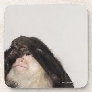 目を覆っている猿 コースター
