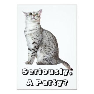 真剣にか。 子猫 カード