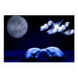 真夜中のイルカのキス ポストカード