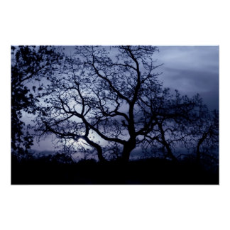 真夜中の日没 ポスター