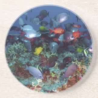 真珠及びHermesの環礁の魚の素晴らしい多様性 コースター