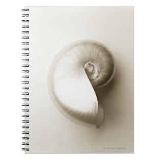 真珠色のオウムガイの海の貝2 ノートブック