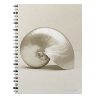 真珠色のオウムガイの海の貝 ノートブック