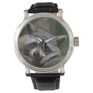 眠いアライグマ 腕時計