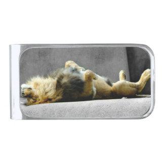 眠いライオンのマネークリップ シルバー マネークリップ