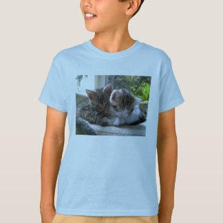 眠い子ネコの子供のティー Tシャツ
