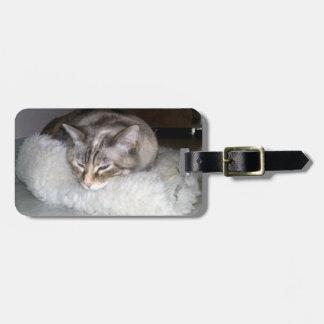 眠い子猫の荷物のラベル ラゲッジタグ