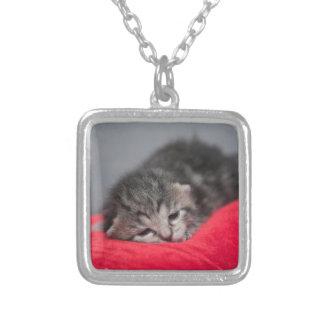 眠い子猫 シルバープレートネックレス