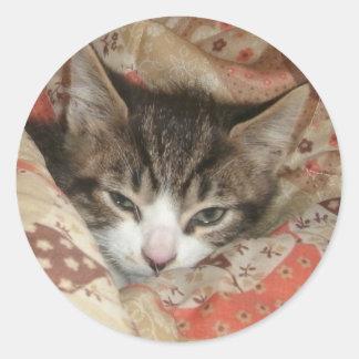眠い子猫 ラウンドシール