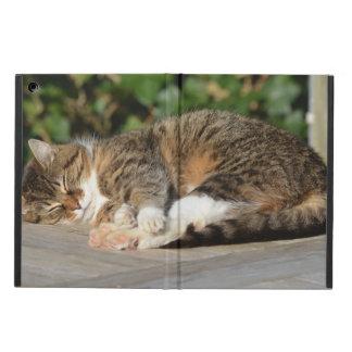 眠い子猫 iPad AIRケース