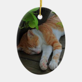 眠い猫 セラミックオーナメント