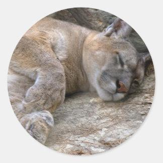 眠い頭部 ラウンドシール