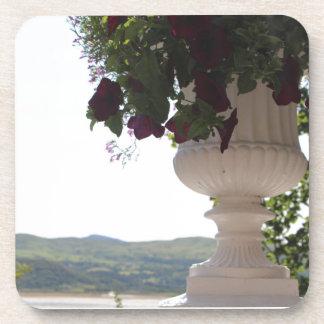 眺めの旧式で白くイタリアンで鉢植えな花 コースター