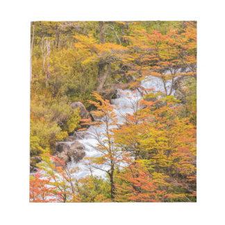 着色された森林景色場面、パタゴニア ノートパッド
