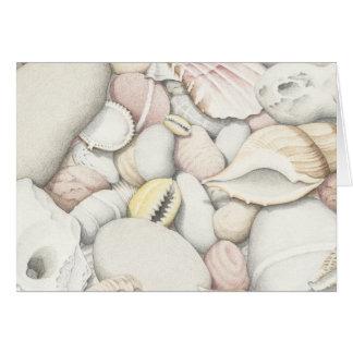 着色された鉛筆の海の貝そして小石 カード