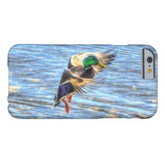 着陸のマガモのアヒルのドレーク5の野性生物の写真 BARELY THERE iPhone 6 ケース