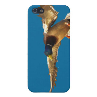 着陸のマガモのアヒルの野性生物の恋人のiPhoneの場合 iPhone 5 ケース