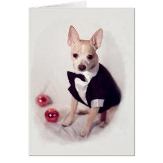 着飾った犬 カード