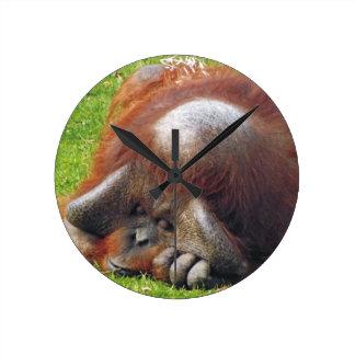 睡眠のオランウータンのおもしろいな写真の柱時計 ラウンド壁時計